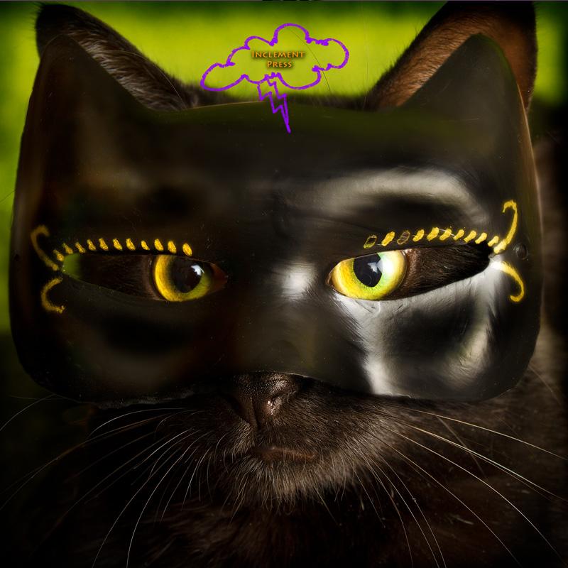 A black cat dressed as a...black cat.